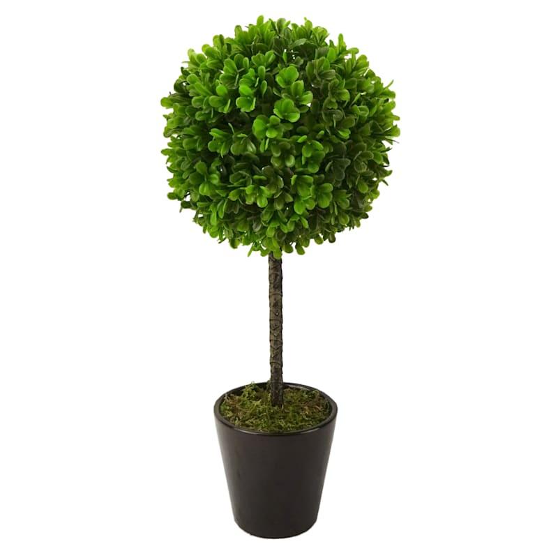 16in. Boxwood Topiary