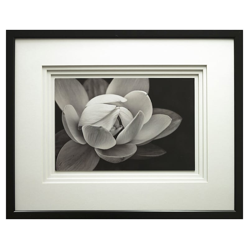 23X29 Lotus Floral Photography Under Glass Art