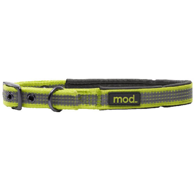 Reflective Dog Collar Green