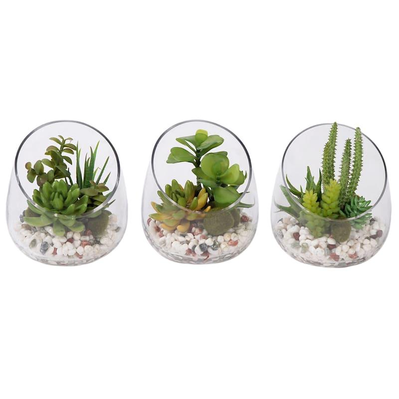 6.5in. Glass Slant Cut Terrarium 3A