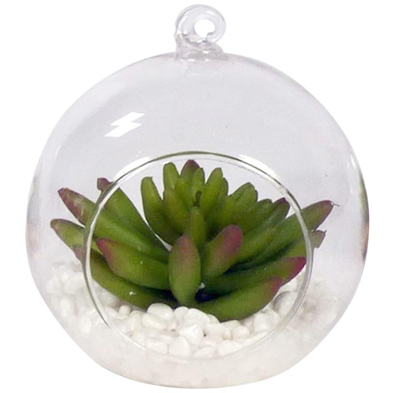 4.5in. Succulent Hanging Orb