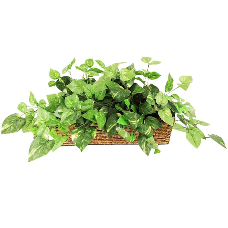 14in. Greenery Rope Ledge