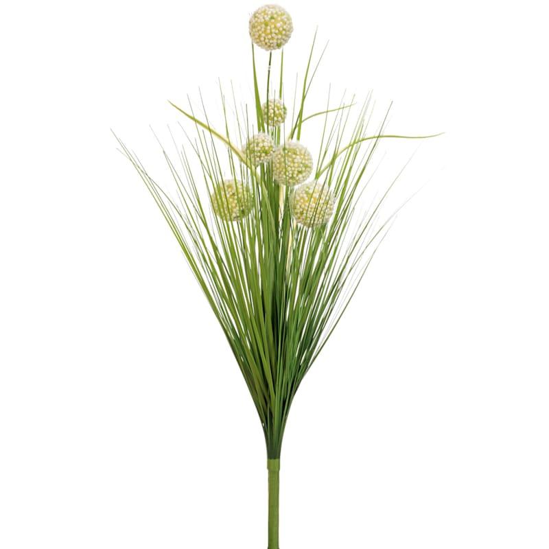 29 POM POM/ONION GRASS BUSH