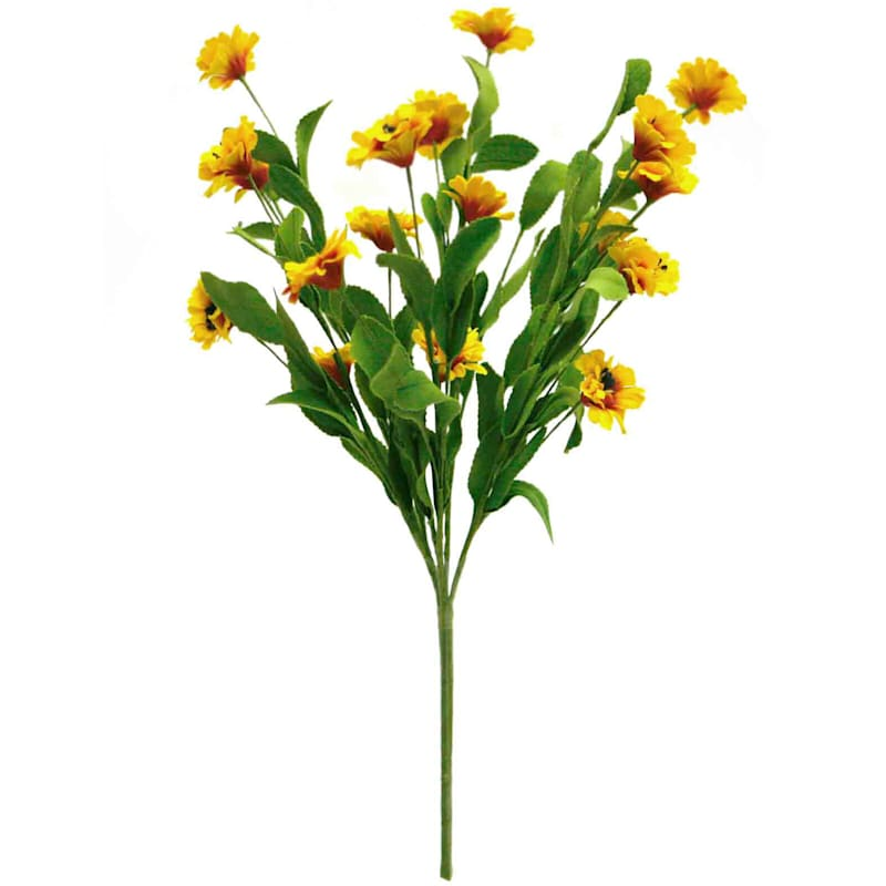 Wild Daisy Bush 18-in. Yellow