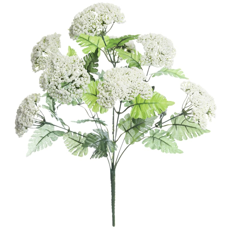 18in. Queen Ann Lace Bush X 9 Cr