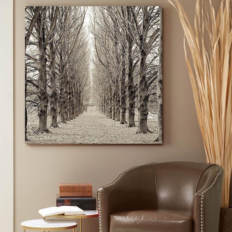 48X48 Hampton Gates Promenade #3 Canvas Art