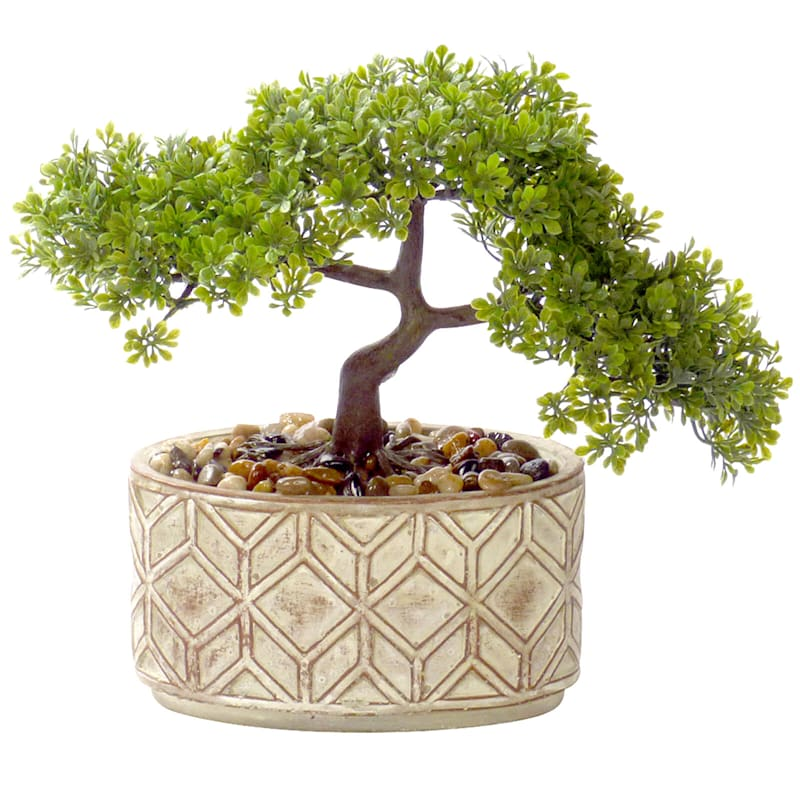 11.5in. Bonsai Tree