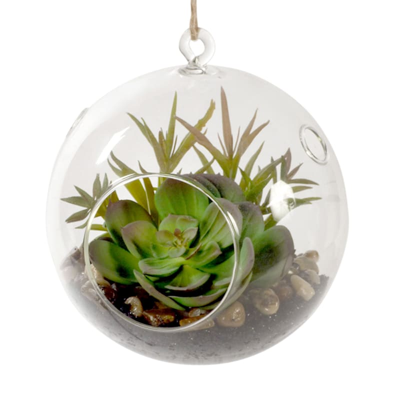 6.5in. Hanging Succulents