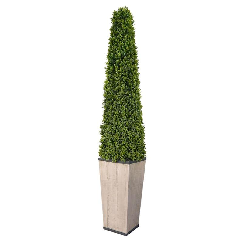 """Cone Topiary Cone in Grey Pot, 53"""""""