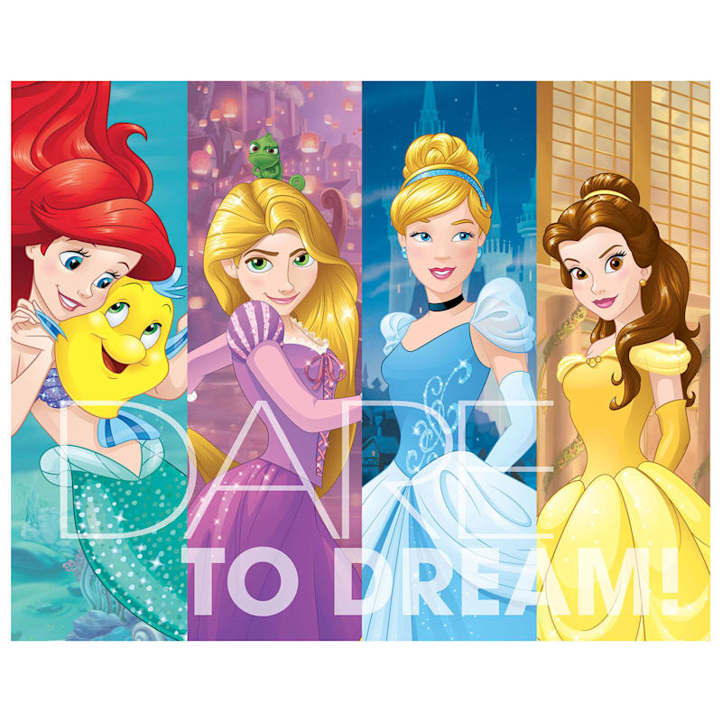 16X20 Disney Princess Dare To Dream Canvas