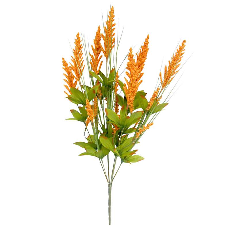 Orange Heather Bush