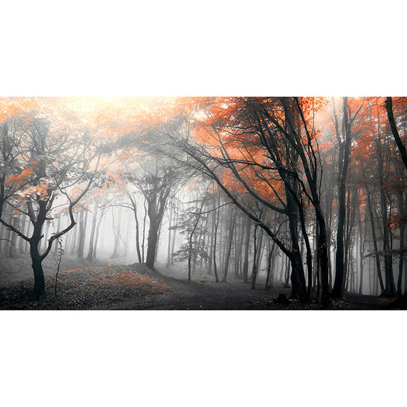 60X36 Autumn Woods Canvas Art