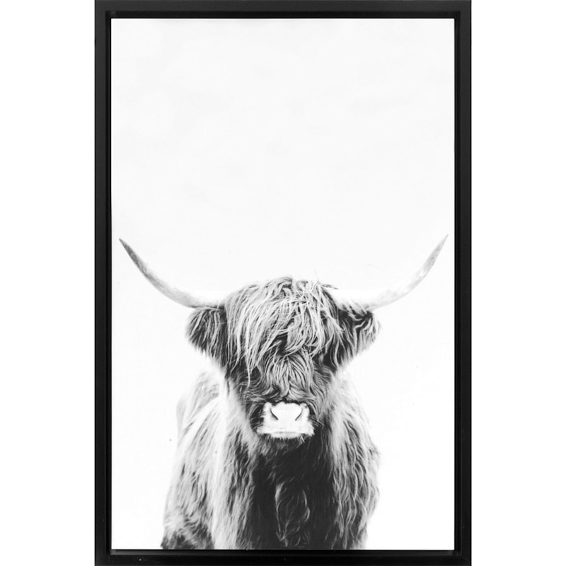 24X36 Bull With Horns Canvas Wall Art