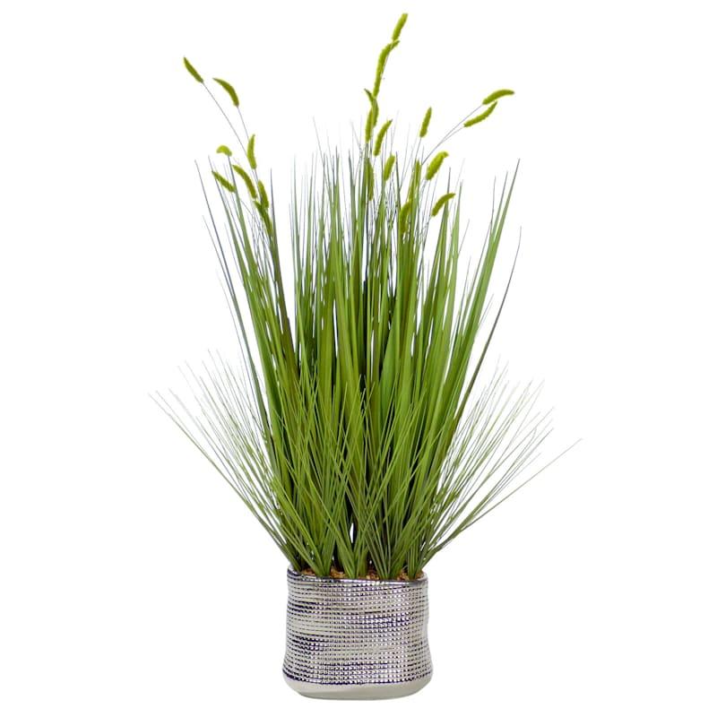 36in. Grass In Birch Pot