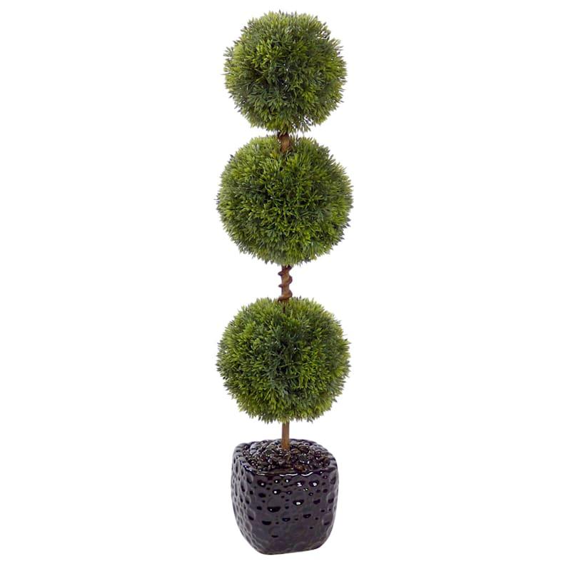 26in. Topiary In Black Box