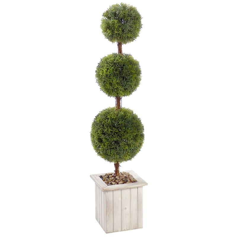 31in. Topiary In White Box