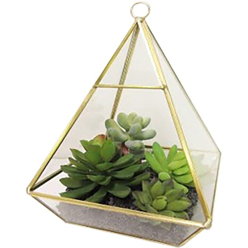 Succulent Glass Terrarium
