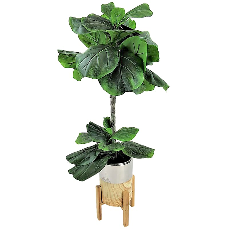 40in. Fig In Cement/Gold Pot