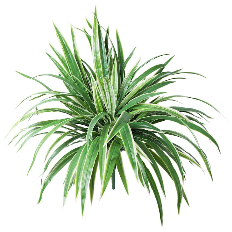 26in. Spider Plant Bush X 7