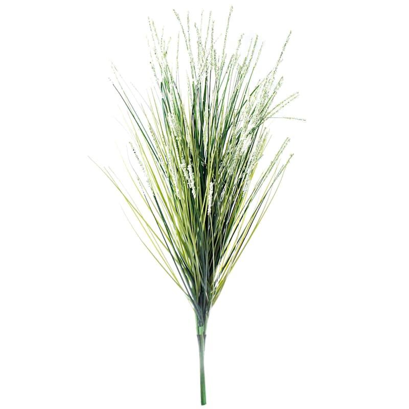 26 BERRIES/ONION GRASS BUSH