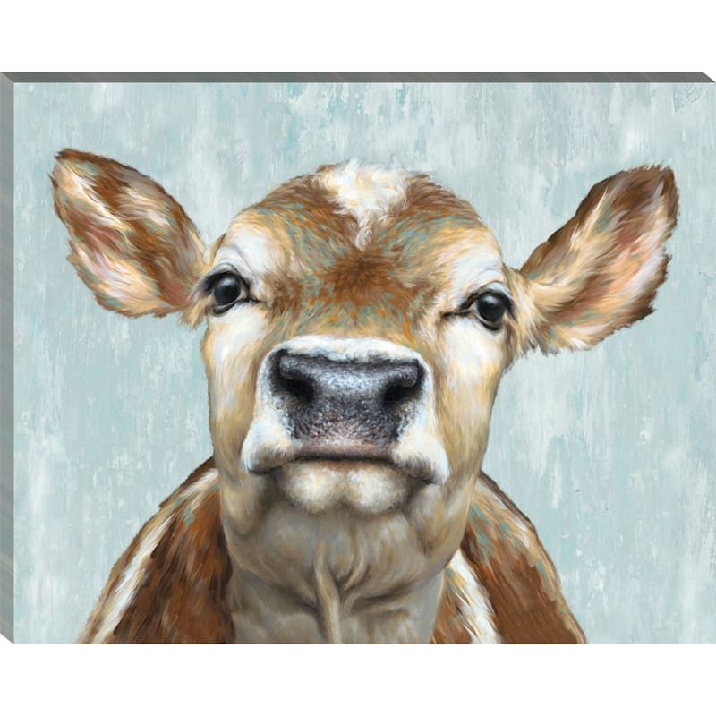 20X16 Painted Jersey Cow Canvas
