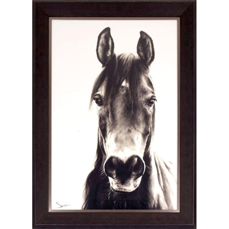 24X36 Horse Portrait Framed Art
