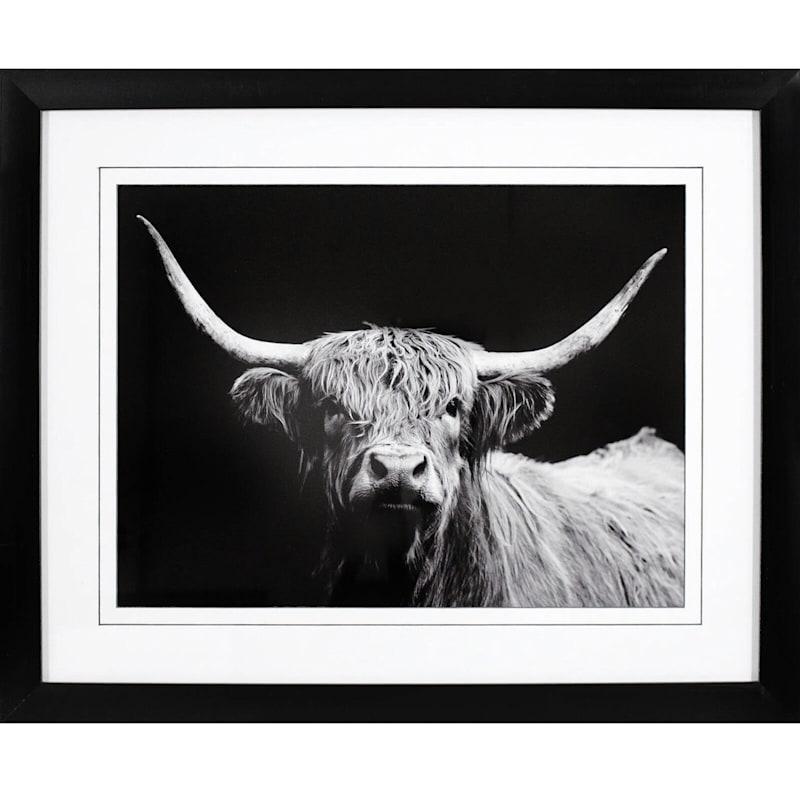 16X20 Highland Cow Framed Matted Art Under Glass
