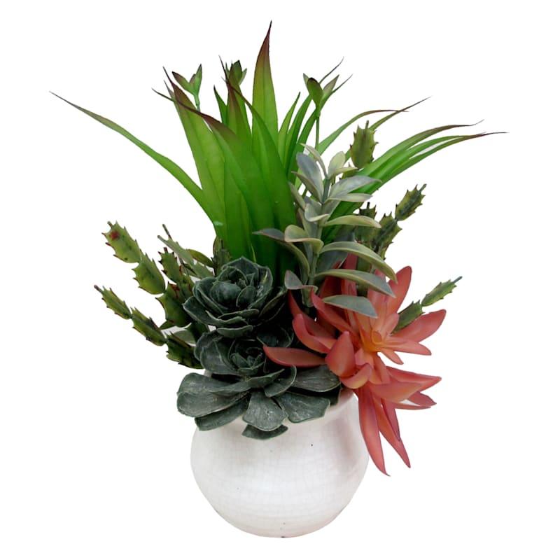 13X9 Multi Succulent Garden White Pot