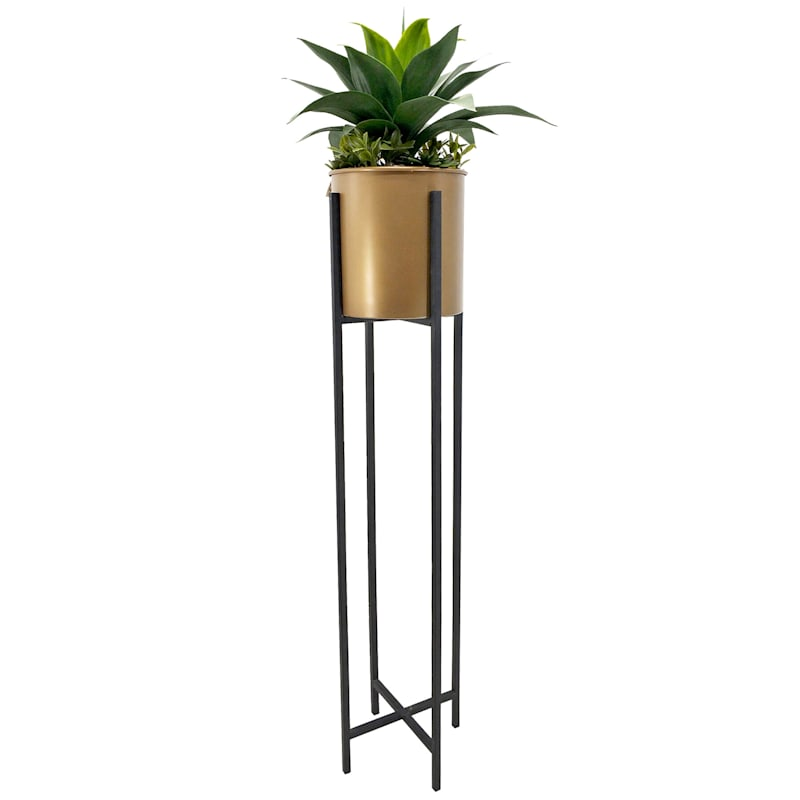51in. Aloe Gold Stand