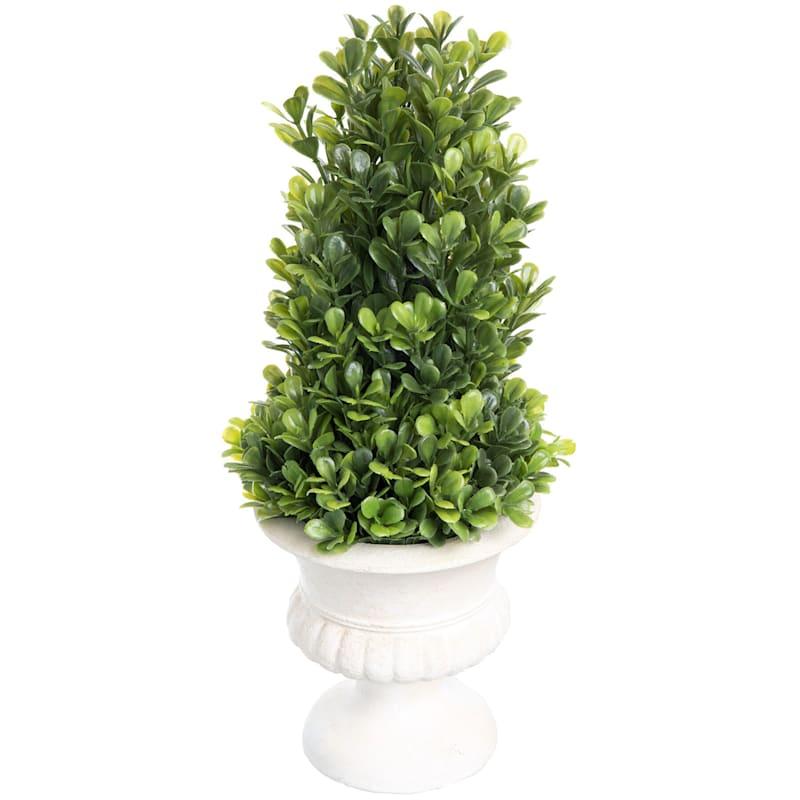 12X6 Boxwood Tree Topiary