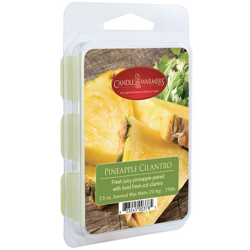 2.5oz Pineapple Cilantro Wax Melt