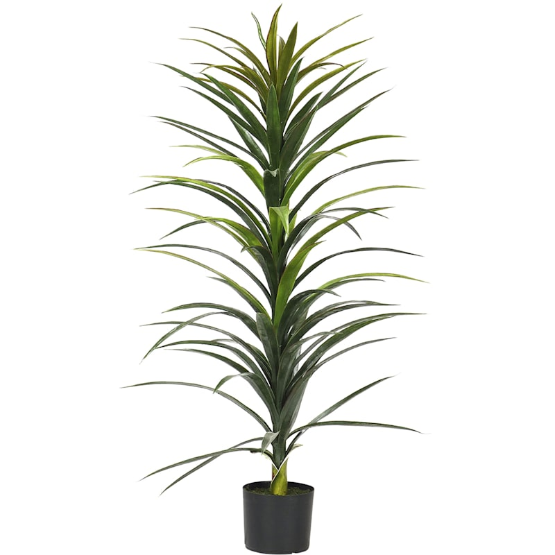 48in. H Yucca Tree