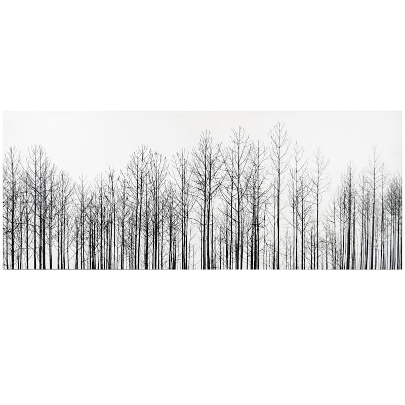 40X16 White Winter Trees Textured Canvas Art