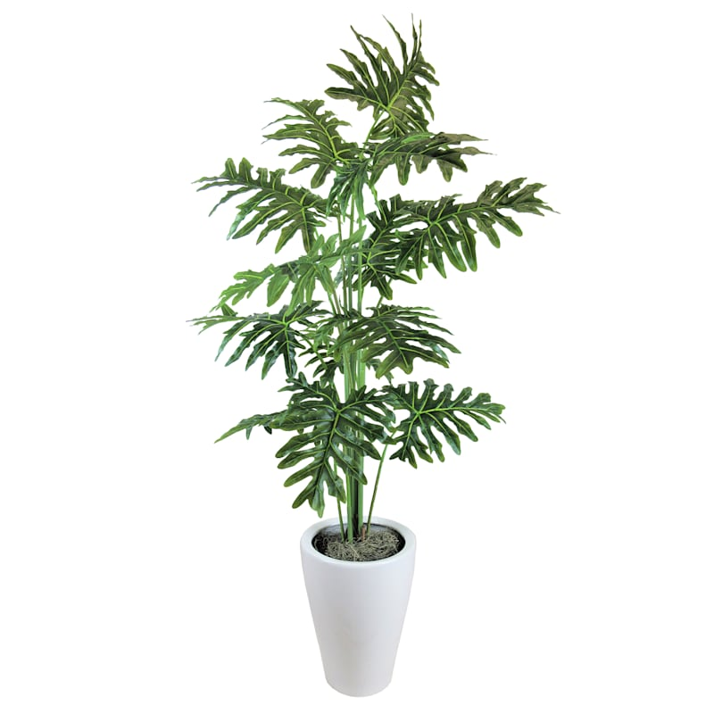 6.5ft. Tropical Leaf Plant in White Pot
