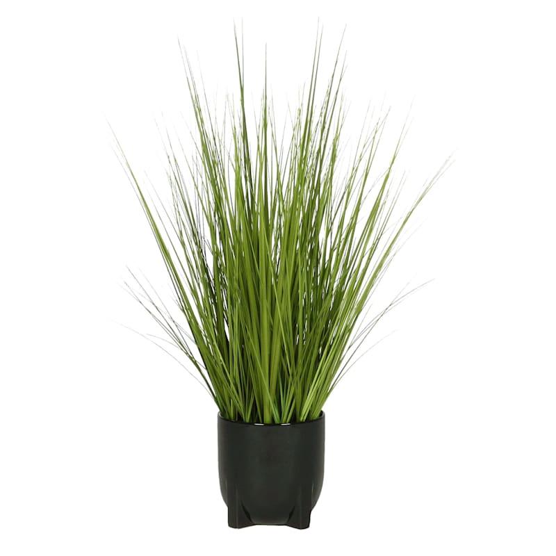 31IN ONION GRASS BLACK POT