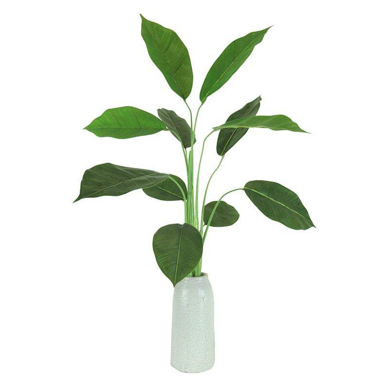 32IN RUBBER PLANT CREAM CRACK