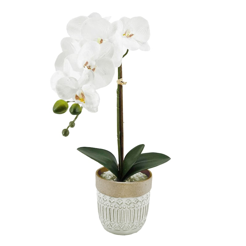 16IN ORCHID IN CERAMIC POT
