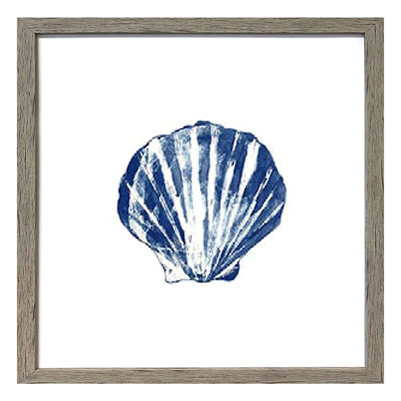 17X17 Sea Shell Framed Art