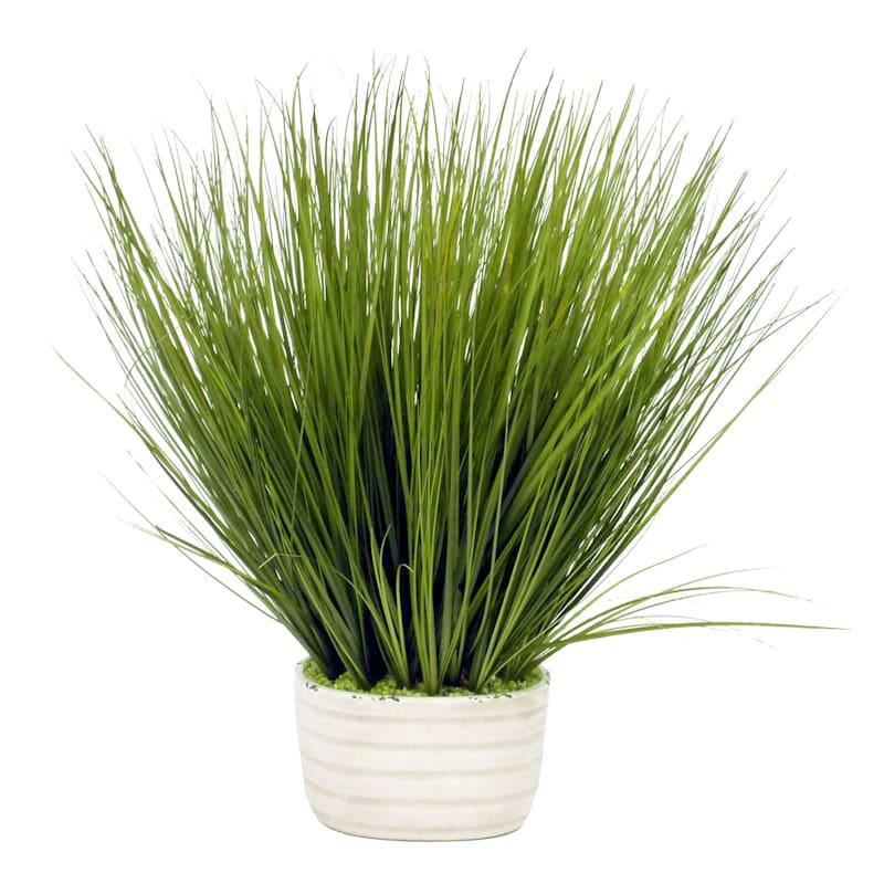 26IN GRASS IN WHITE CERAMIC PO