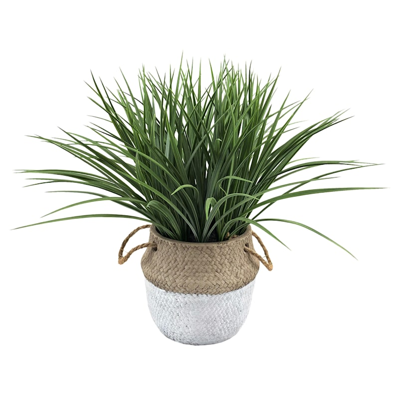 18IN GRASS IN CEMENT POT