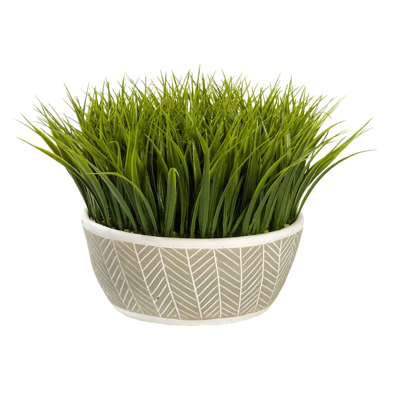 11IN GRASS IN CEMENT POT