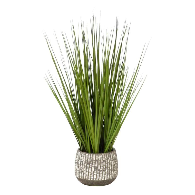 23.75IN ONION GRASS CEMENT POT