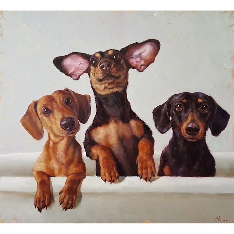12X12 Three Dogs In Bath Tub Canvas Wall Art