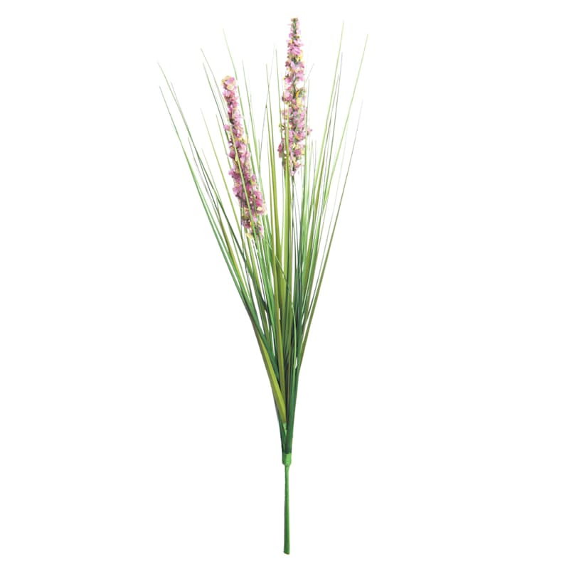 21 ASTILBE -ONION GRASS BUSH P