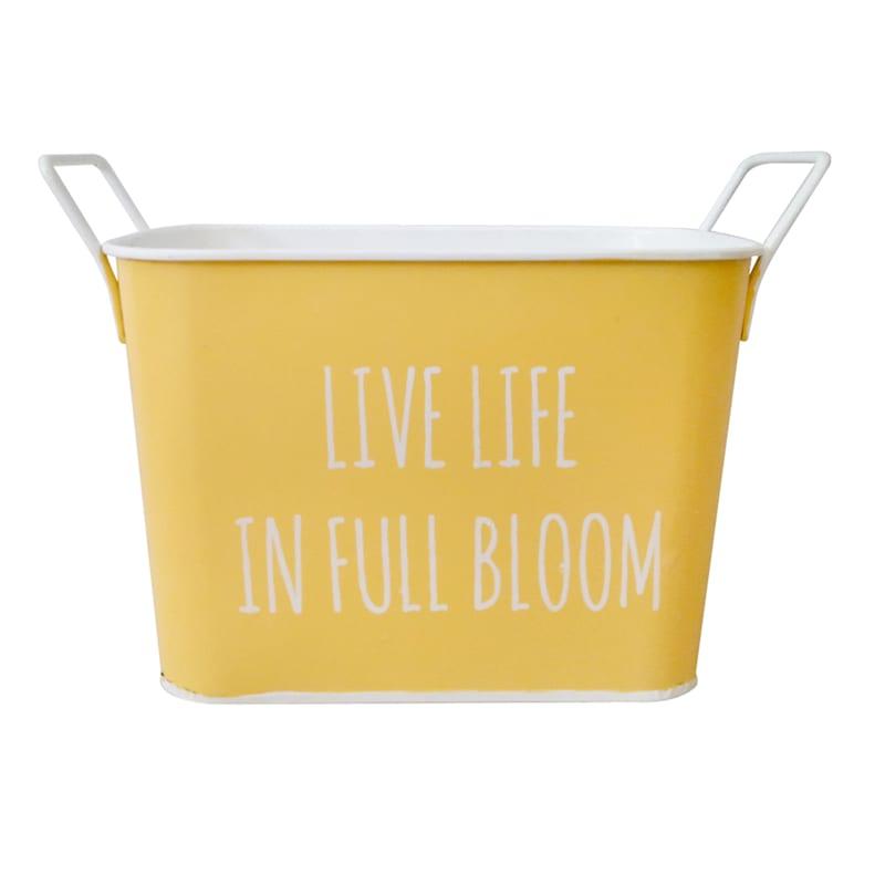 Yellow/Planter Bucket Live Life Full Bloom