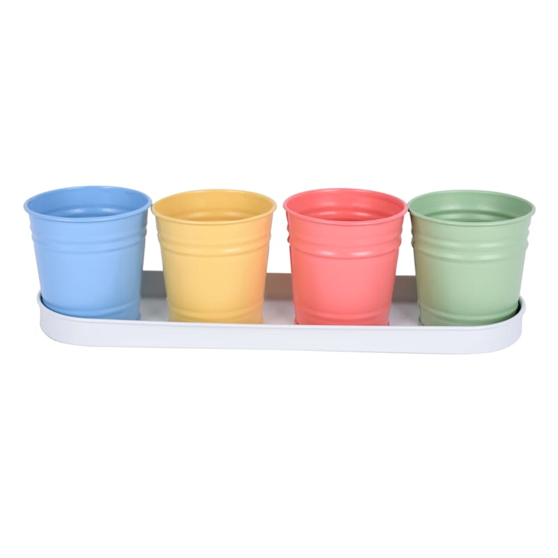 Set of 4 Bucket/Tray for Succulent