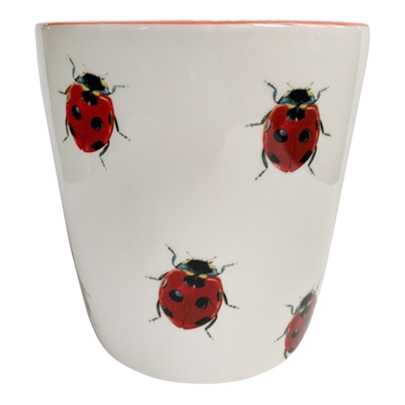 Grace Mitchell Ceramic Ladybug Pot, 6""
