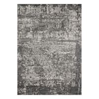 (B528) Holden Abstract Gray Area Rug, 5x7