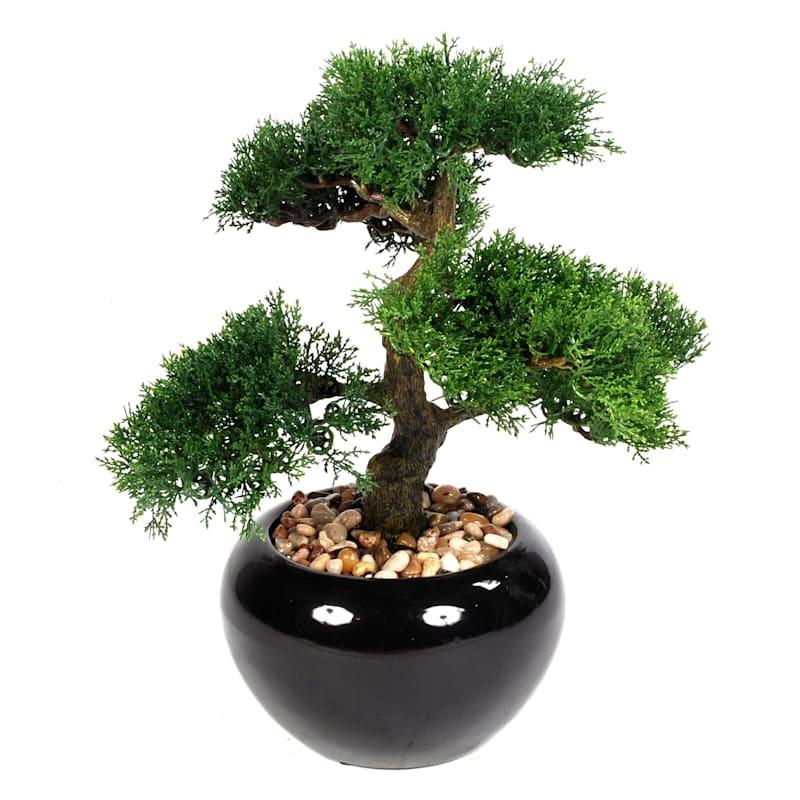 15in. Bonsai Tree Ceramic Pot