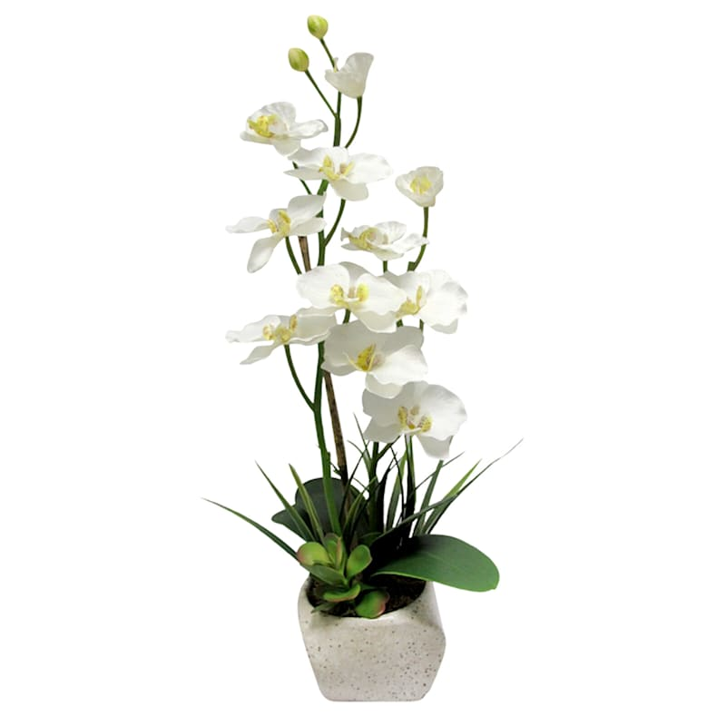 23in. White Orchid In Stone Look Pot